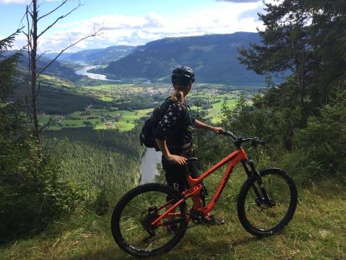 Utsikt over dalen